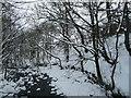 SD9097 : Straw Beck, downstream [east] from Duckingdub Bridge by Christine Johnstone