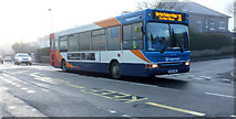 SX9065 : Number 31 bus on Cricketfield Road by Derek Harper