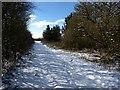 SD3908 : Snowy track by Bryan Pready