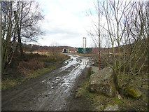 SE1211 : Entrance to filled-in quarry, Honley Wood by Humphrey Bolton