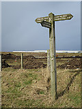 NJ9602 : Path Signpost by Anne Burgess