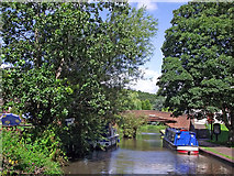 SK1705 : Canal in Hopwas, Staffordshire by Roger  Kidd