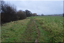 SX9986 : Footpath by Gillbrook by N Chadwick