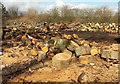 SX6957 : Logs near Langford Gate by Derek Harper