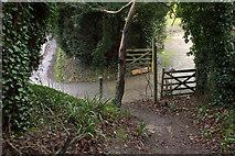 TQ2151 : Start of footpath alongside Pebblehill Road by Robert Eva