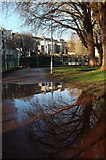 SX9164 : Reflection, Upton Park by Derek Harper