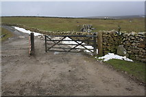 SD7880 : Dales Way approaching the B6255 by Roger Templeman