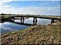 NY2257 : Whitrigg Bridge, River Wampool by G Laird