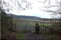 TQ2152 : North Downs Way. Gate near Poor's Field by Robert Eva