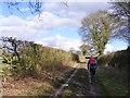 SJ8108 : Way View by Gordon Griffiths