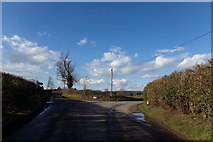 TL1624 : Whitehall Road, King's Walden by Adrian Cable