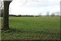 ST6168 : Park, Stockwood by Derek Harper