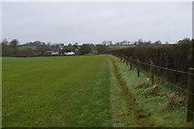 SY0088 : Footpath by hedge by N Chadwick