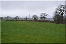 SY0088 : Rolling field by N Chadwick