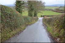 SX9988 : Ebford Lane by N Chadwick