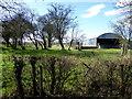 H5270 : Farmland, Bancran by Kenneth  Allen