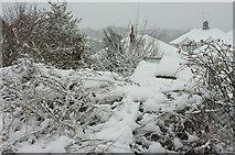 SX9065 : Snow in Torre by Derek Harper