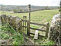 ST7756 : Norton St Philip, stile by Mike Faherty
