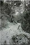 SX9065 : Snowy footpath, Chapel Hill Pleasure Grounds by Derek Harper