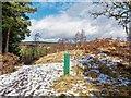 NH7036 : Littlemill Esker Trail by valenta