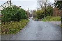 SX9887 : Ebford Lane by N Chadwick