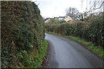SX9888 : Ebford Lane by N Chadwick