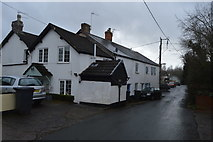 SX9888 : In Ebford by N Chadwick