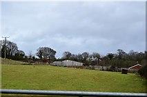 SX9888 : Farm buildings, Ebford by N Chadwick