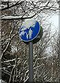 SX9064 : Snow on sign near Torre Station by Derek Harper