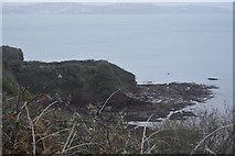 SX8958 : Wave cut platform by N Chadwick