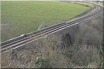 SX8957 : Railway Viaduct, Dartmouth Steam Railway by N Chadwick