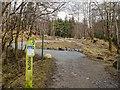 NN1777 : Mountain Bike Trail by valenta