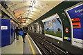 TQ2681 : Bakerloo Line, Paddington Underground Station by N Chadwick