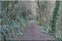 SX9267 : Footpath near Watcombe by N Chadwick