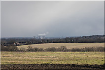 TQ3097 : View South from Williams Wood, Trent Park by Christine Matthews