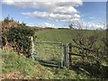 SJ7944 : Metal gate on public bridleway by Jonathan Hutchins