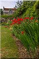 SZ4083 : Lower Garden, Mottistone Gardens by Ian Capper