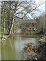 SP6948 : Towcwester Mill and its millpond by Humphrey Bolton