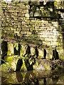 NT0874 : Union Canal cutting, Millgate : Week 14