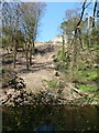 SJ9490 : Landslip, River Goyt by Dave Dunford