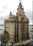 SJ3390 : The Royal Liver Building by Anthony Parkes
