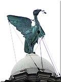 SJ3390 : A Liver Bird by Anthony Parkes