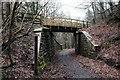 SO6115 : Old railway bridge by John Winder