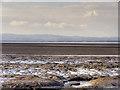 SD4365 : Across the Bay by David Dixon