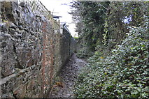 SX9364 : Muddy footpath by N Chadwick