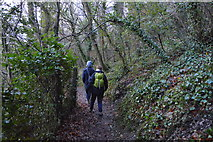 SX9364 : Walkers, South West Coast Path (Bishop's Walk) by N Chadwick