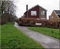 ST3091 : Southwest corner of Claremont, Malpas, Newport by Jaggery