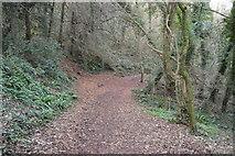 SX9267 : John Musgrave Trail by N Chadwick