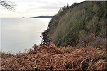 SX9268 : Blackaller's Cove by N Chadwick