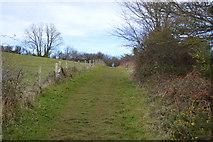 SX9269 : South West Coast Path by N Chadwick